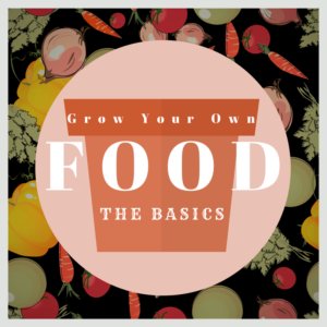 Growing Food: The Basics http://ow.ly/zK8F30dClGC