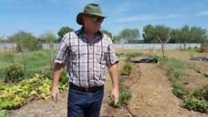Learn to Farm at MCC Sustainable Agriculture Program