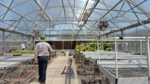 Learn to farm in a greenhouse