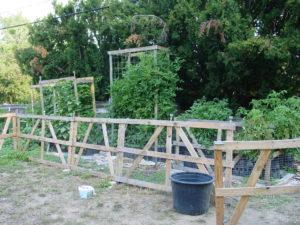 Backyard Permaculture Garden