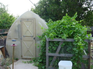 Backyard Permaculture Greenhouse