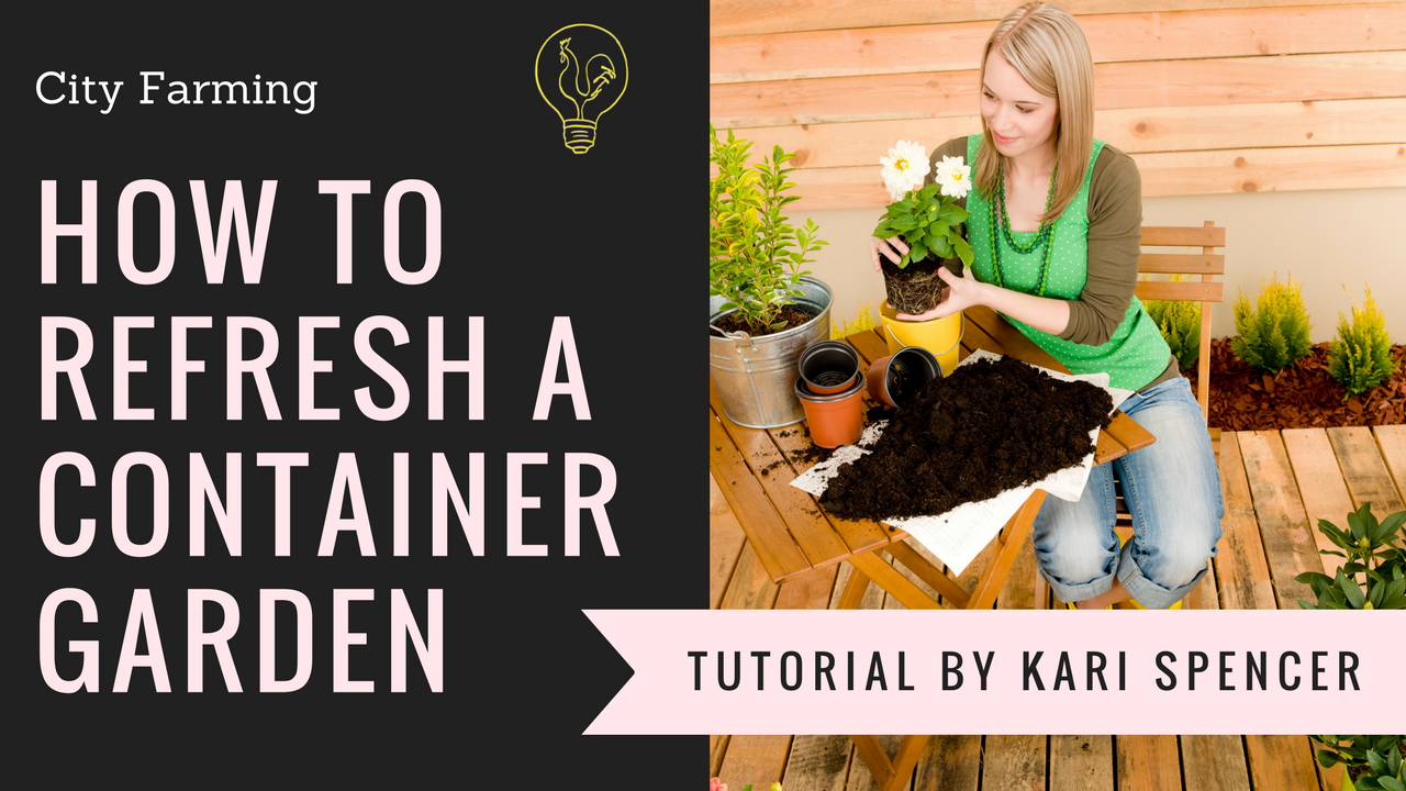how to replant a container garden
